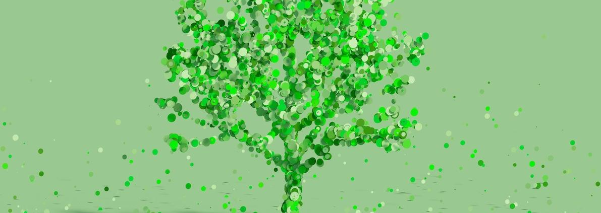 Nachhaltigkeitscontrolling in Organisationen der Sozialwirtschaft_Grüner Baum vor grünen Hintergrund